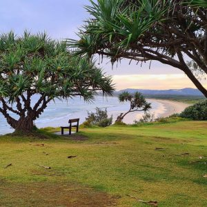Read more about the article Corindi Beach, NSW